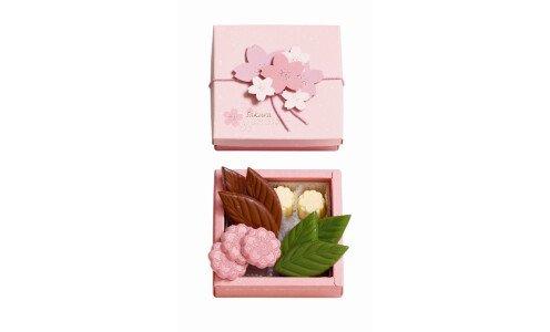 FURANSUYA Hanazakura S — набор шоколада
